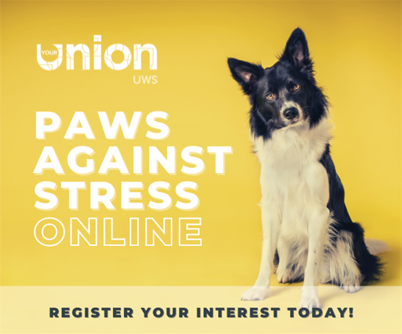 Paws Against Stress - Register Your Interest Today!