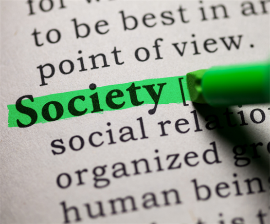 Everything you need to know about society council and how to get involved!
